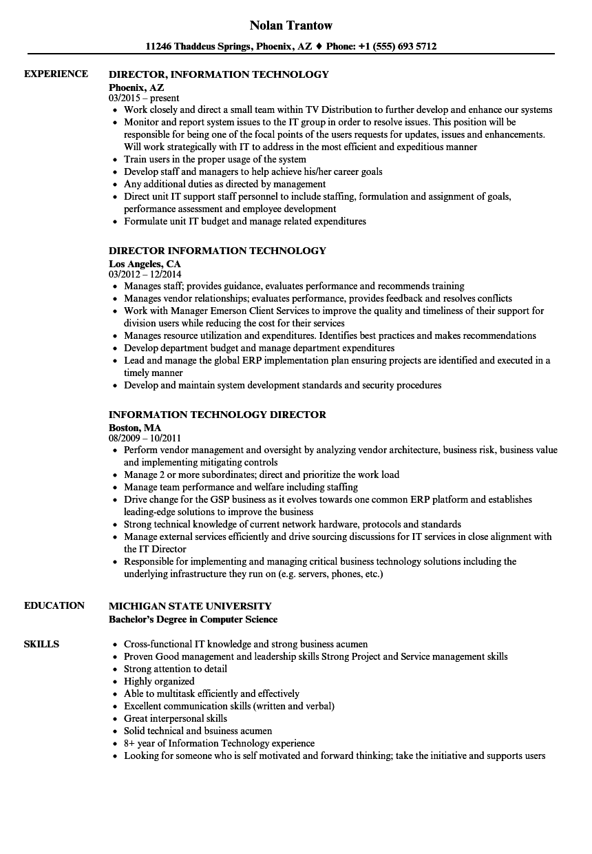 information technology functional resume example