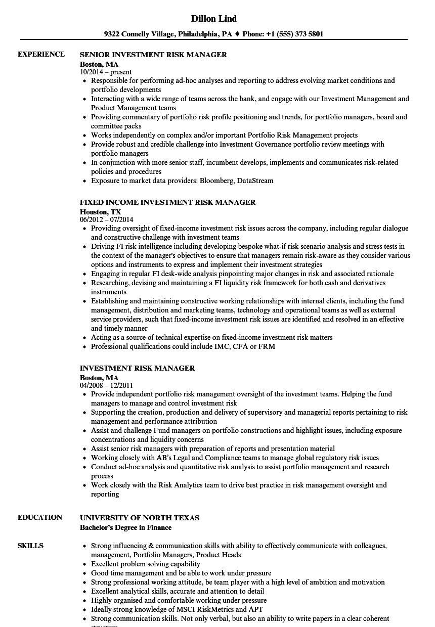Investment Risk Manager Resume Samples Velvet Jobs