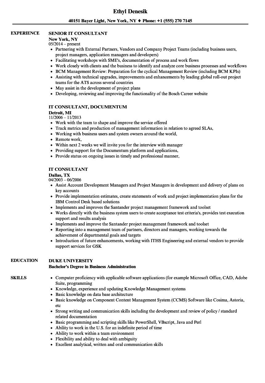 IT Consultant Resume Samples  Velvet Jobs