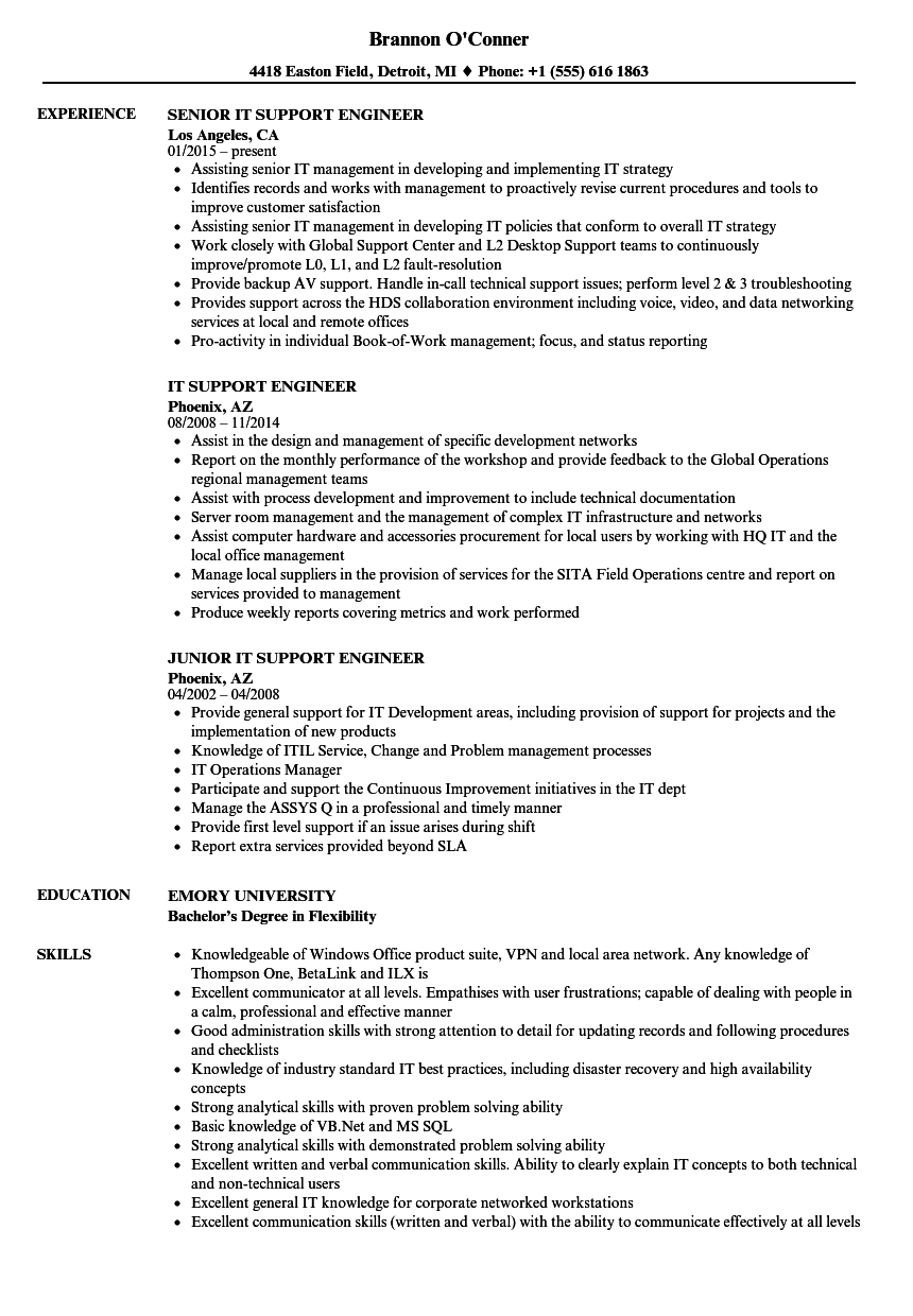 system support engineer resume sample