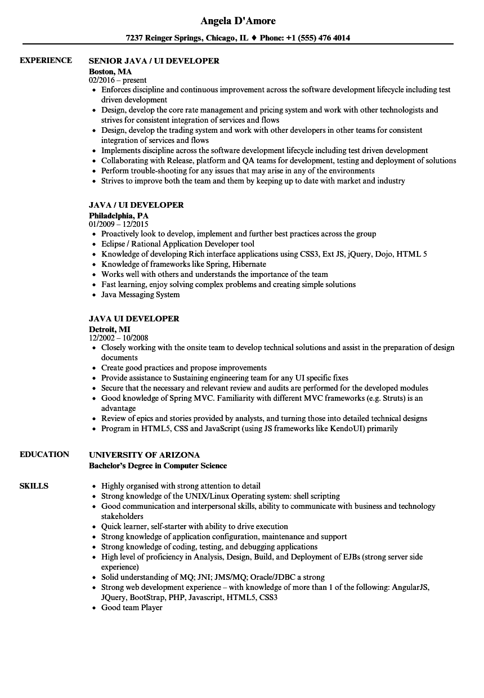 java ui resume sample
