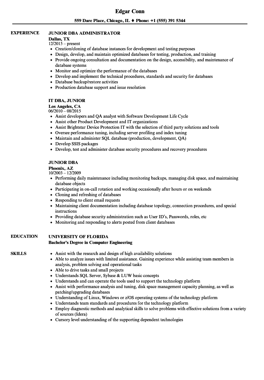 Junior DBA Resume Samples Velvet Jobs