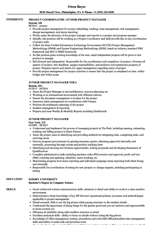 Junior Project Manager Resume Samples  Velvet Jobs