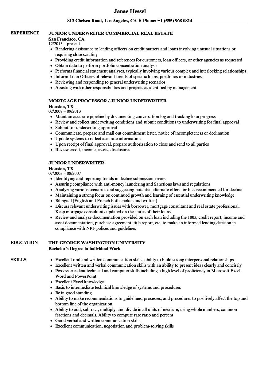 sample underwriter resume