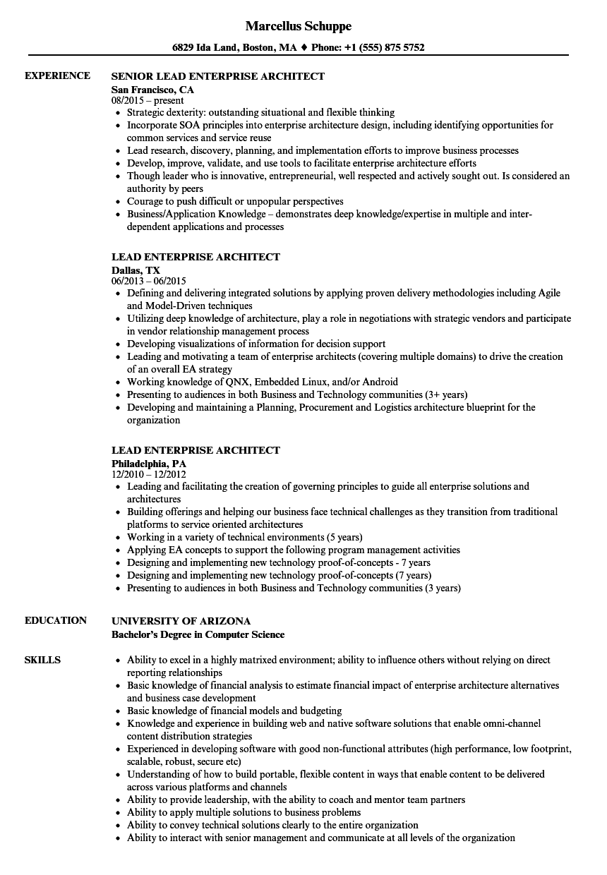 Lead Enterprise Architect Resume Samples  Velvet Jobs