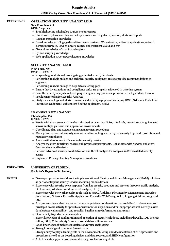 data security lead resume sample