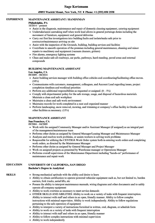 resume language description