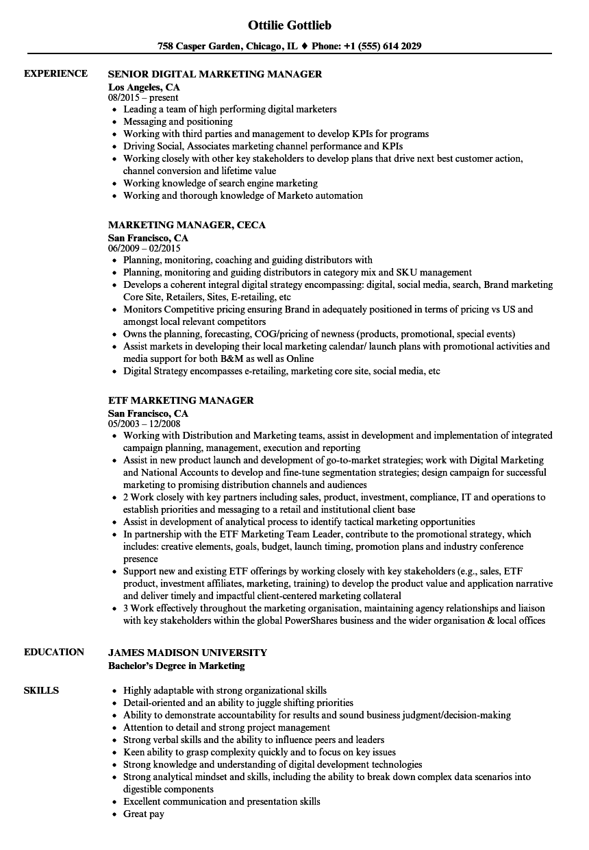 Marketing manager resume example examples of resumes for Cv template for marketing job