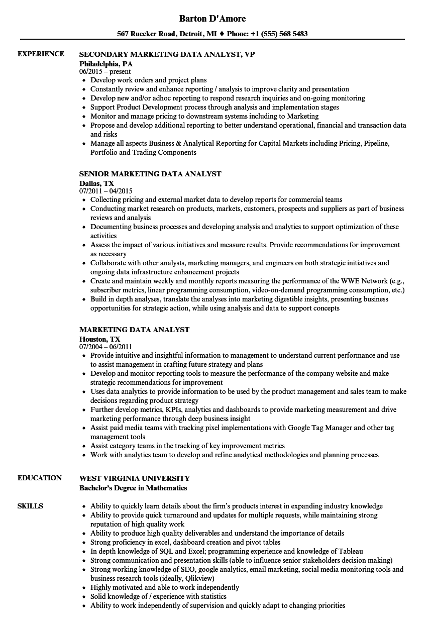 Data Analyst Resume Example - Examples of Resumes
