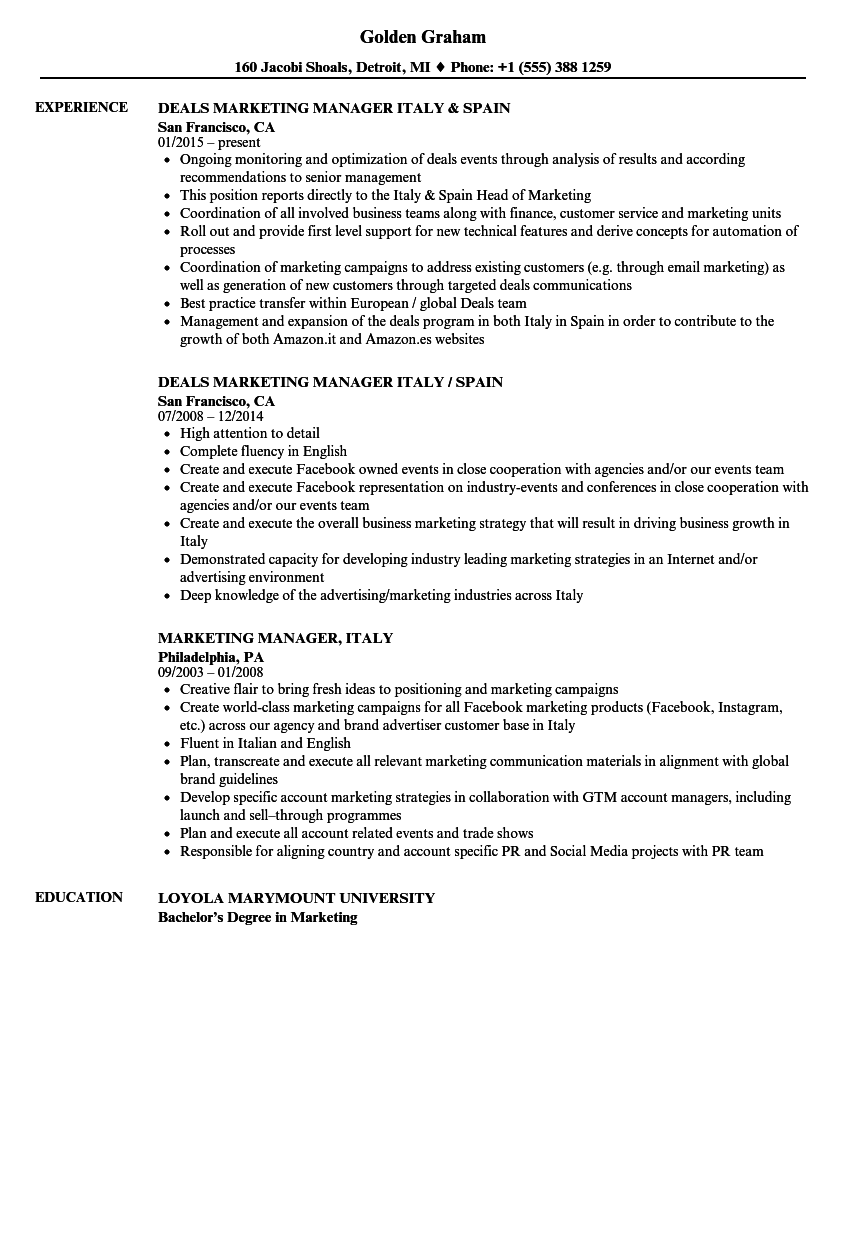 International Marketing Manager Resume Sample Resume Examples