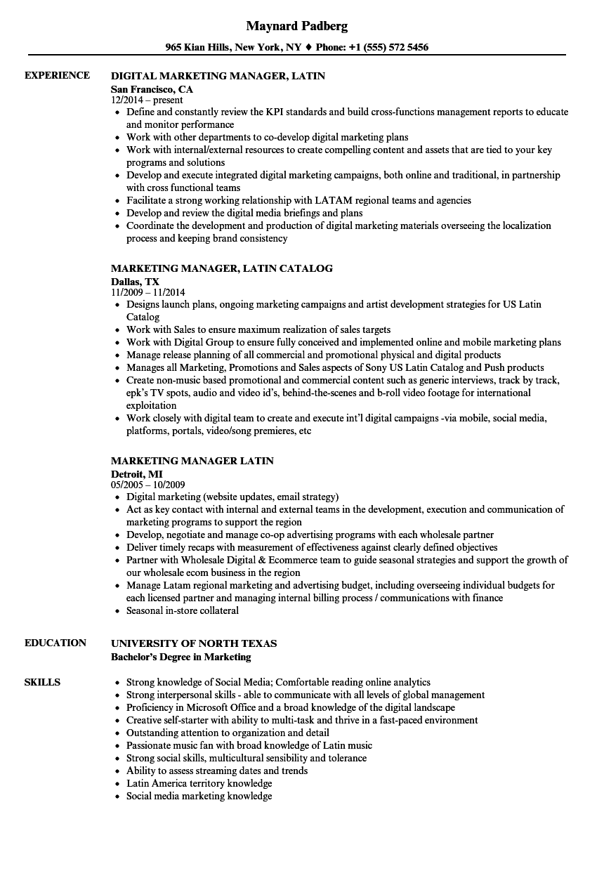 resume in portuguese sample