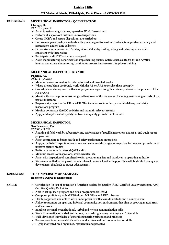 api inspector resume examples
