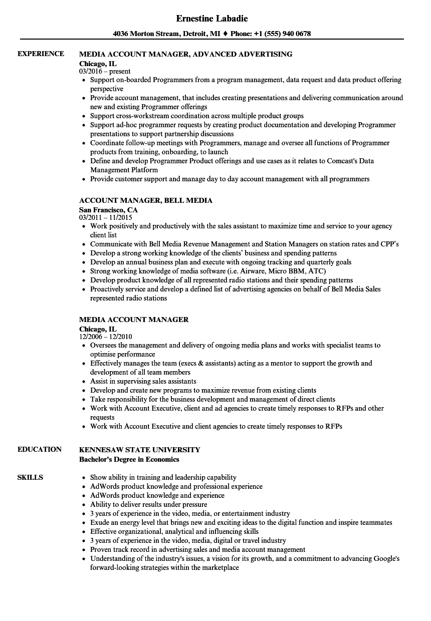 Download Media Account Manager Resume Sample As Image File