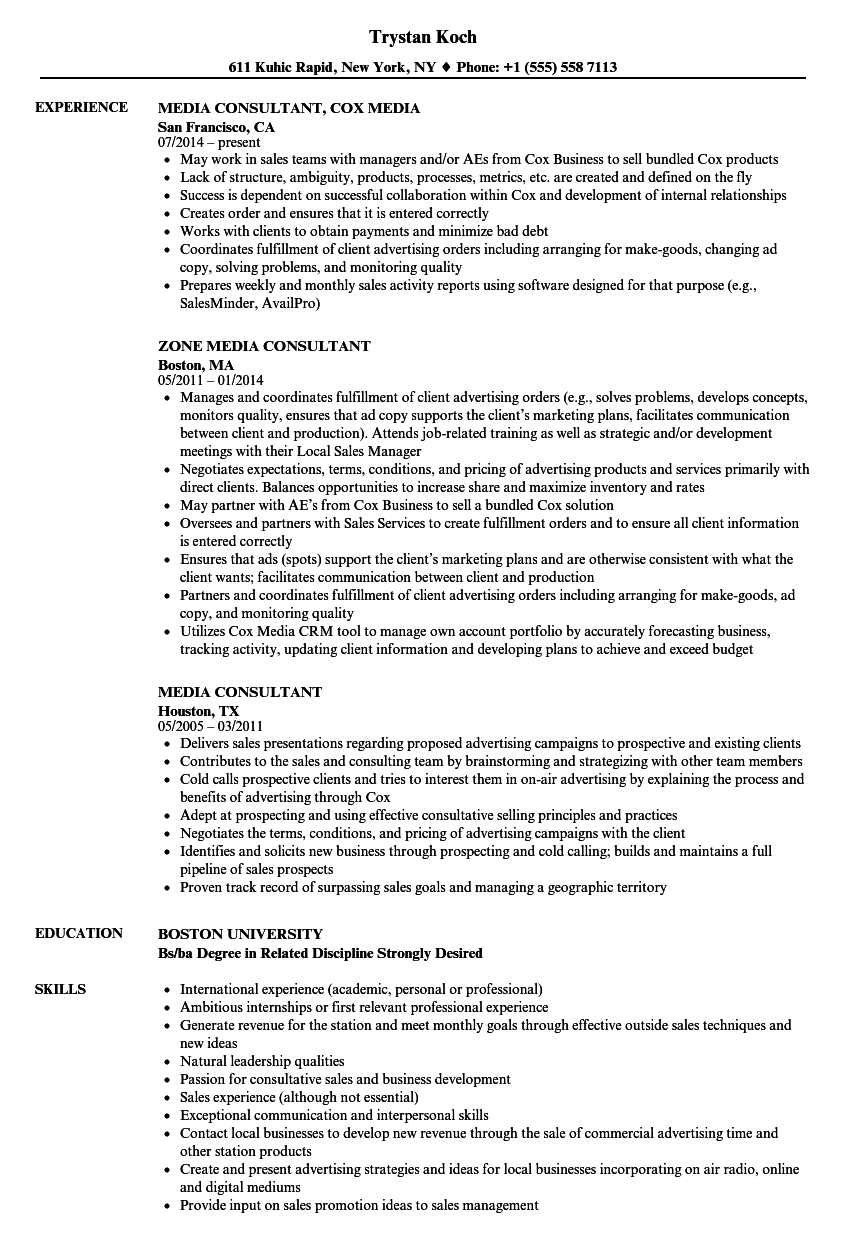 Download Media Consultant Resume Sample As Image File