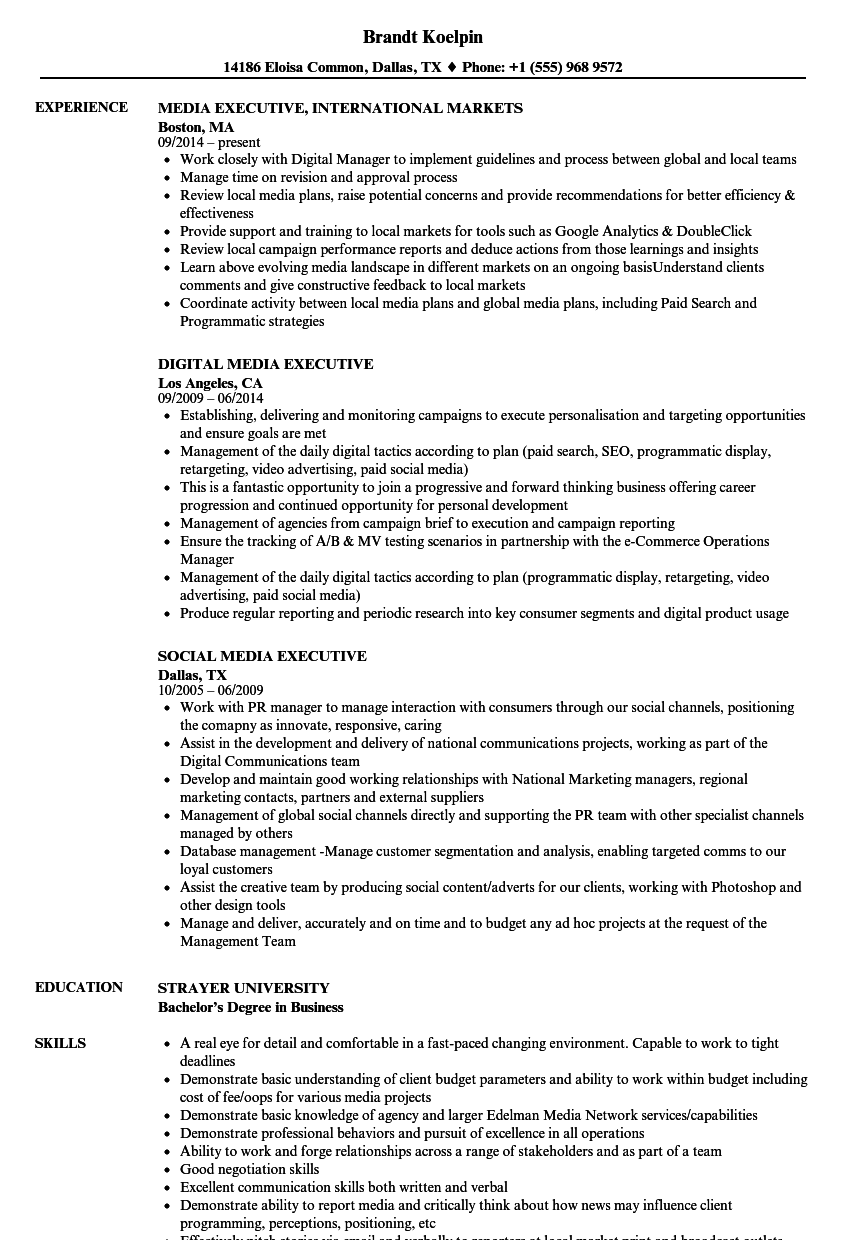 Download Media Executive Resume Sample As Image File