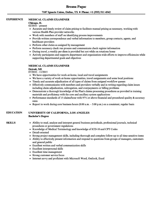 sample examiner resumes