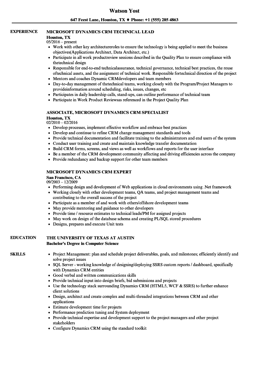 ms dynamics nav resume sample