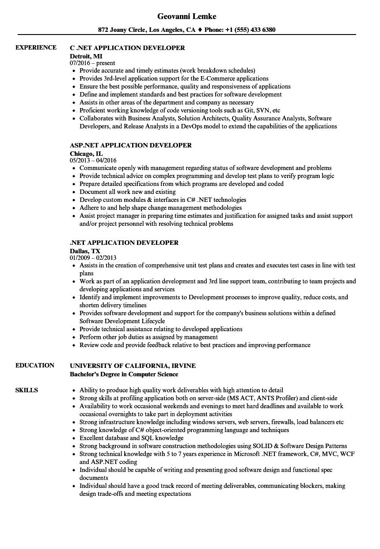 Net Application Developer Resume Sample As Image File