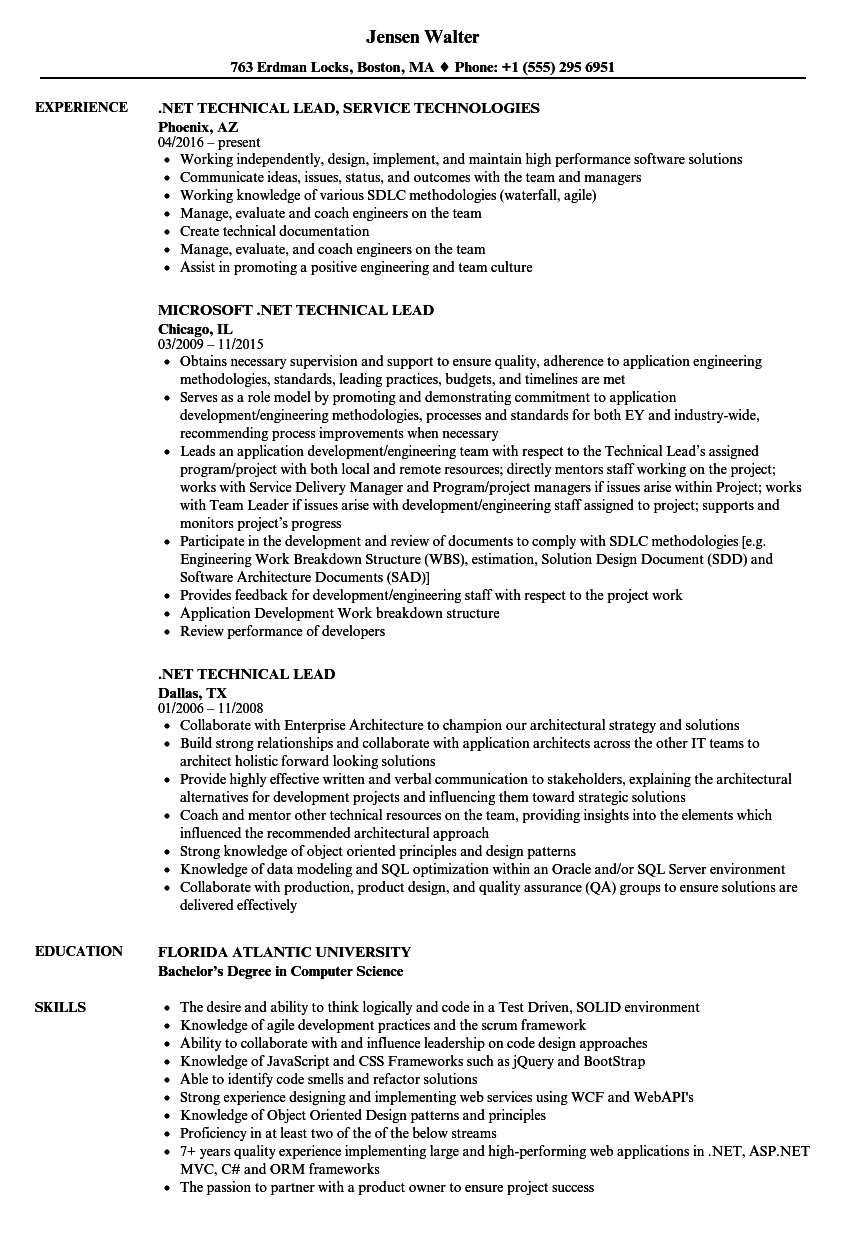 resume samples technical lead