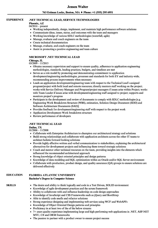 entity framework sample resume