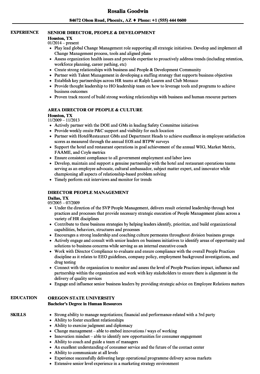 people director resume sample