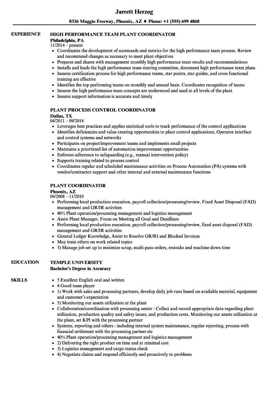 resume of english coordinator