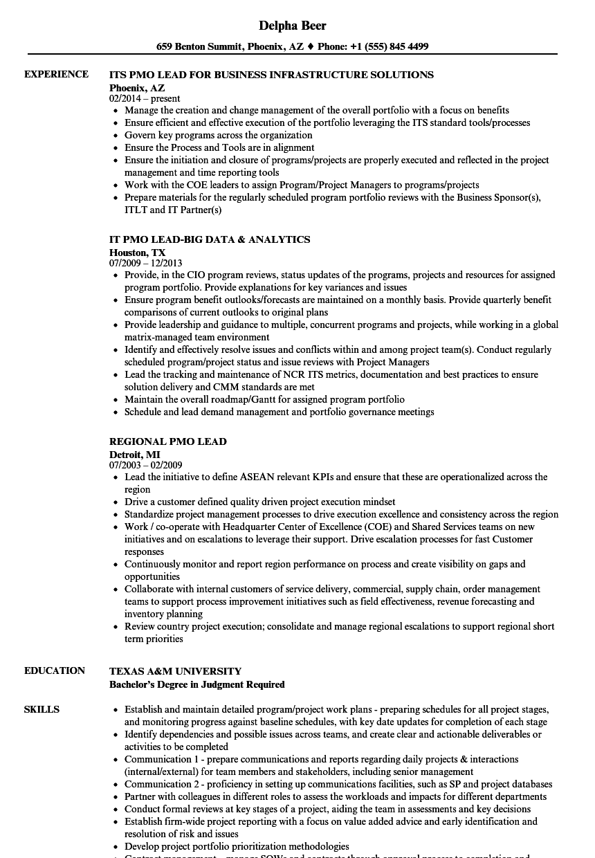 problem solver resume sample