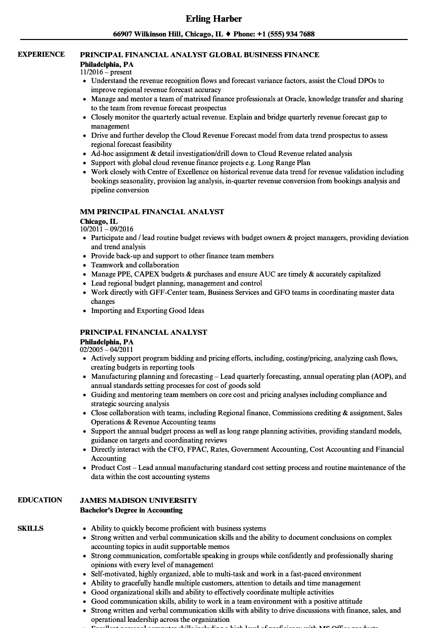 Principal Financial Analyst Resume Samples Velvet Jobs