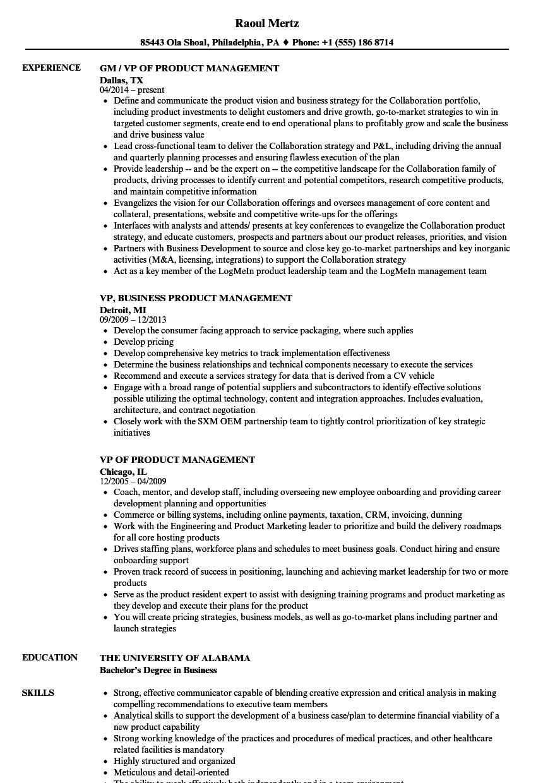 sample resume vp product development
