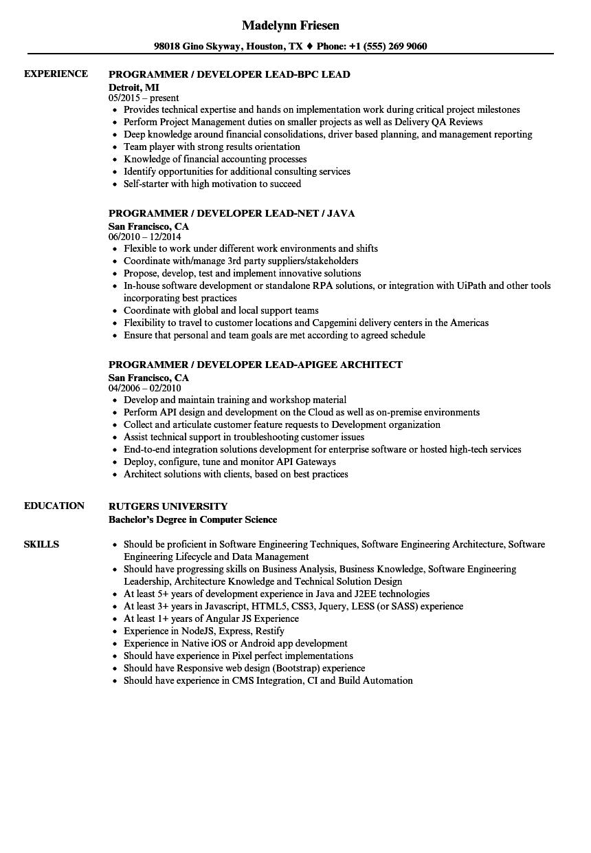 r programmer sample resume