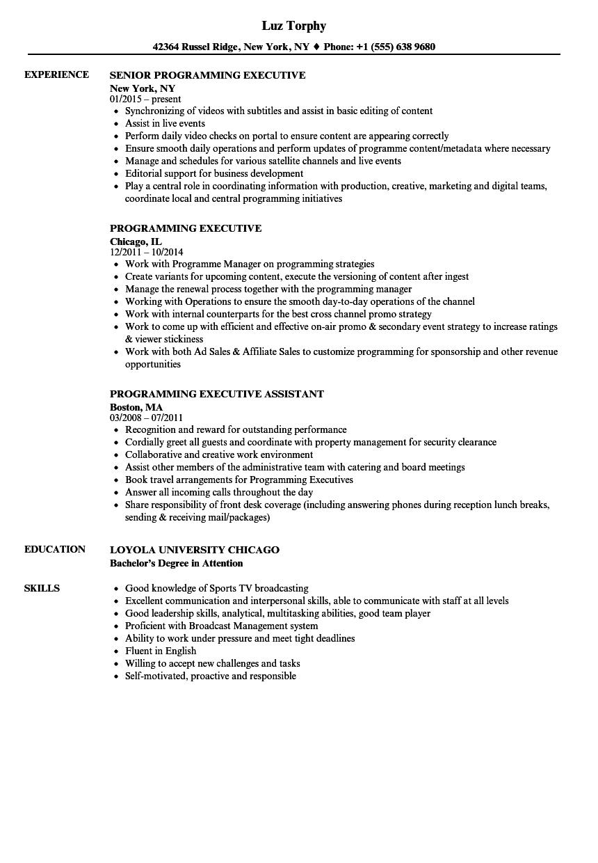 Programming Executive Resume Samples | Velvet Jobs