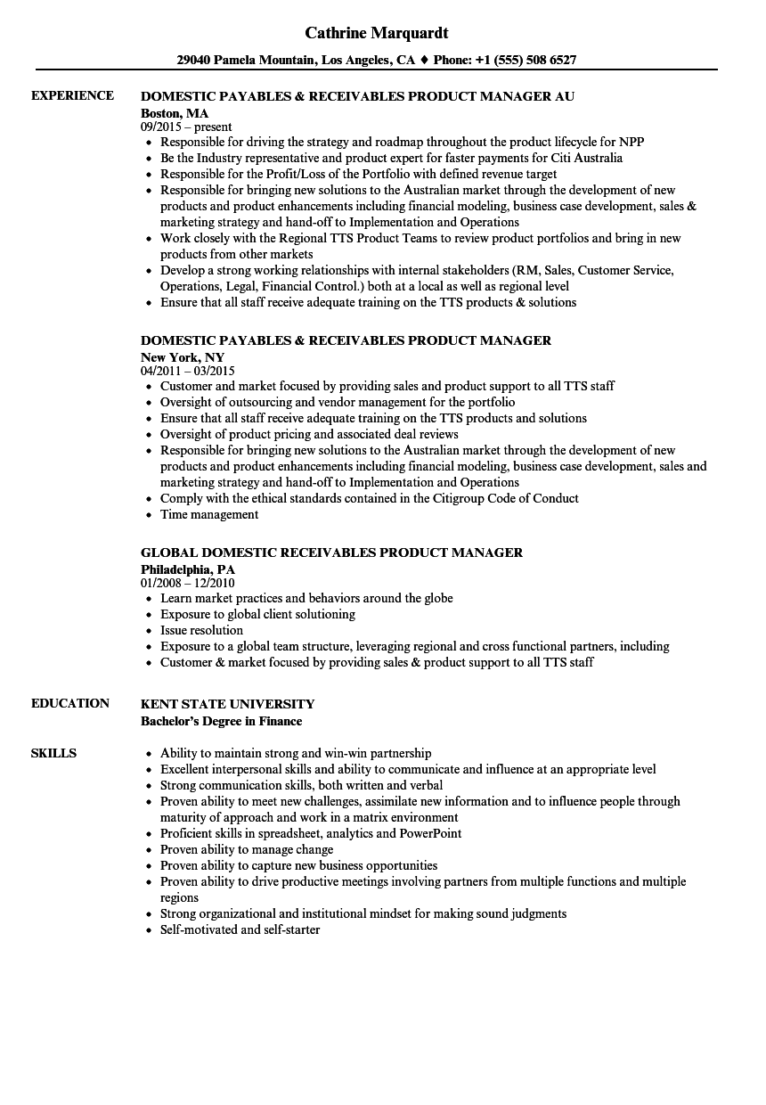 Download Receivables Product Manager Resume Sample As Image File