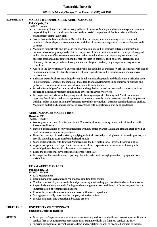 sample senior it manager resume