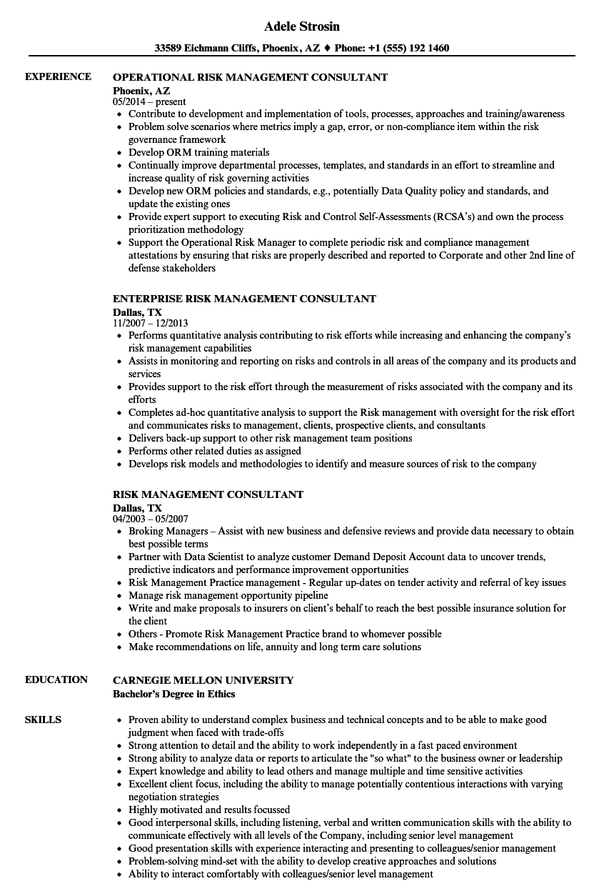 operational risk consultant resume sample