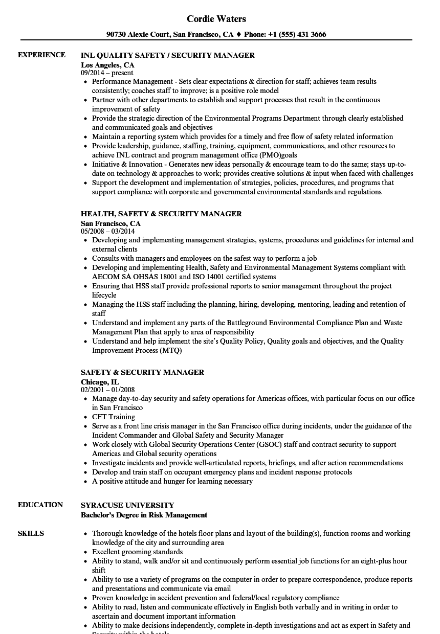 Download Safety & Security Manager Resume Sample As Image File