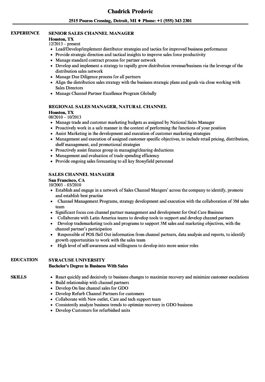 Sales Channel Manager Resume Samples Velvet Jobs