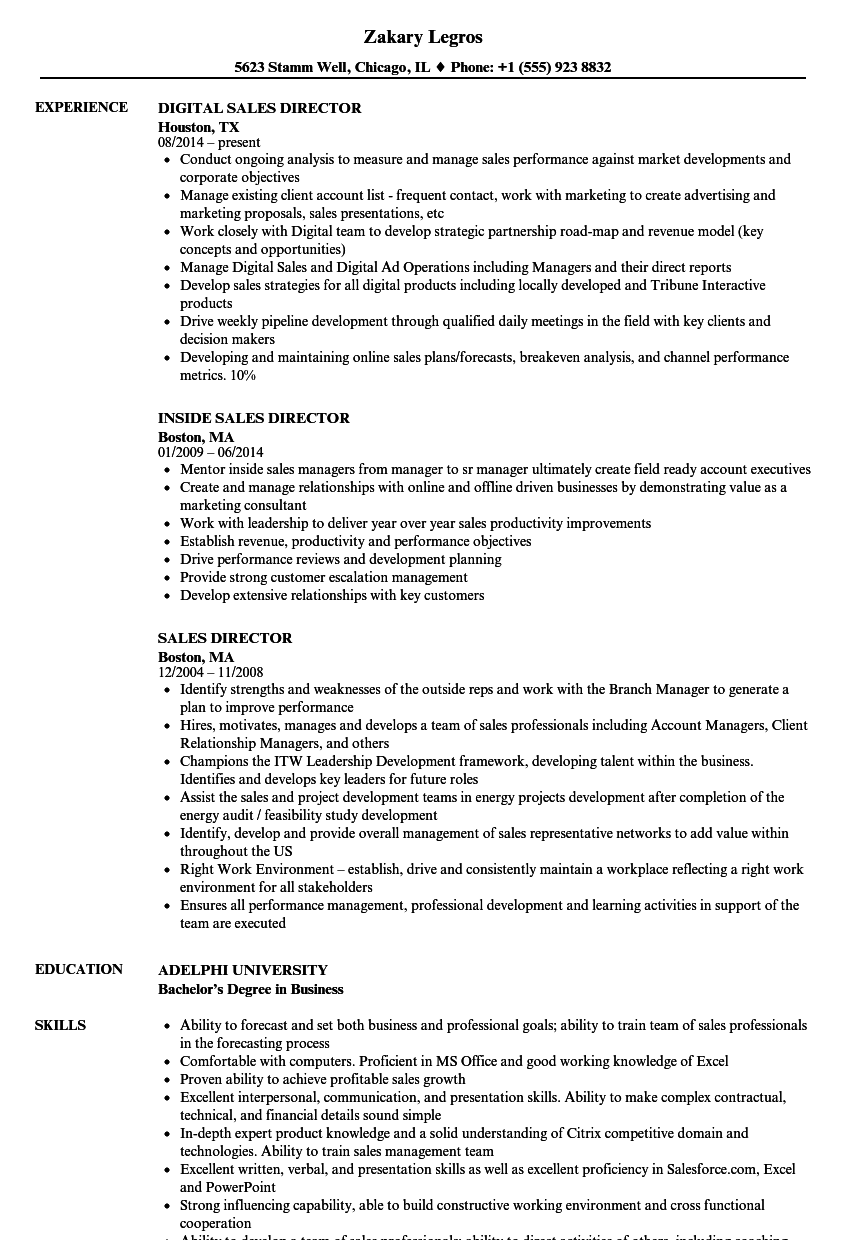 resume samples directing