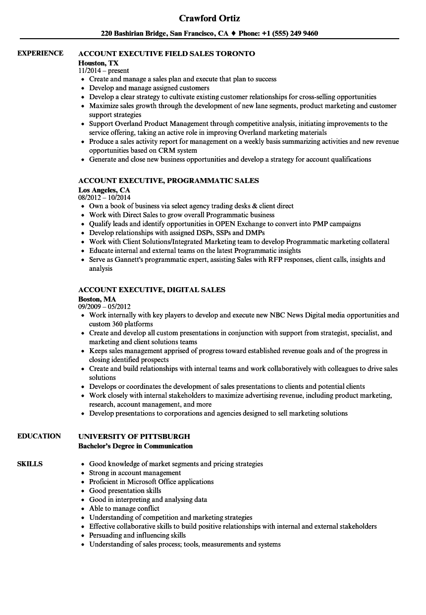 Download Sales Executive / Account Executive Resume Sample As Image File