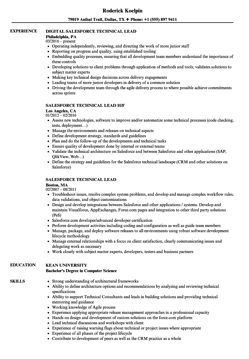 Salesforce Technical Lead Resume Samples Velvet Jobs