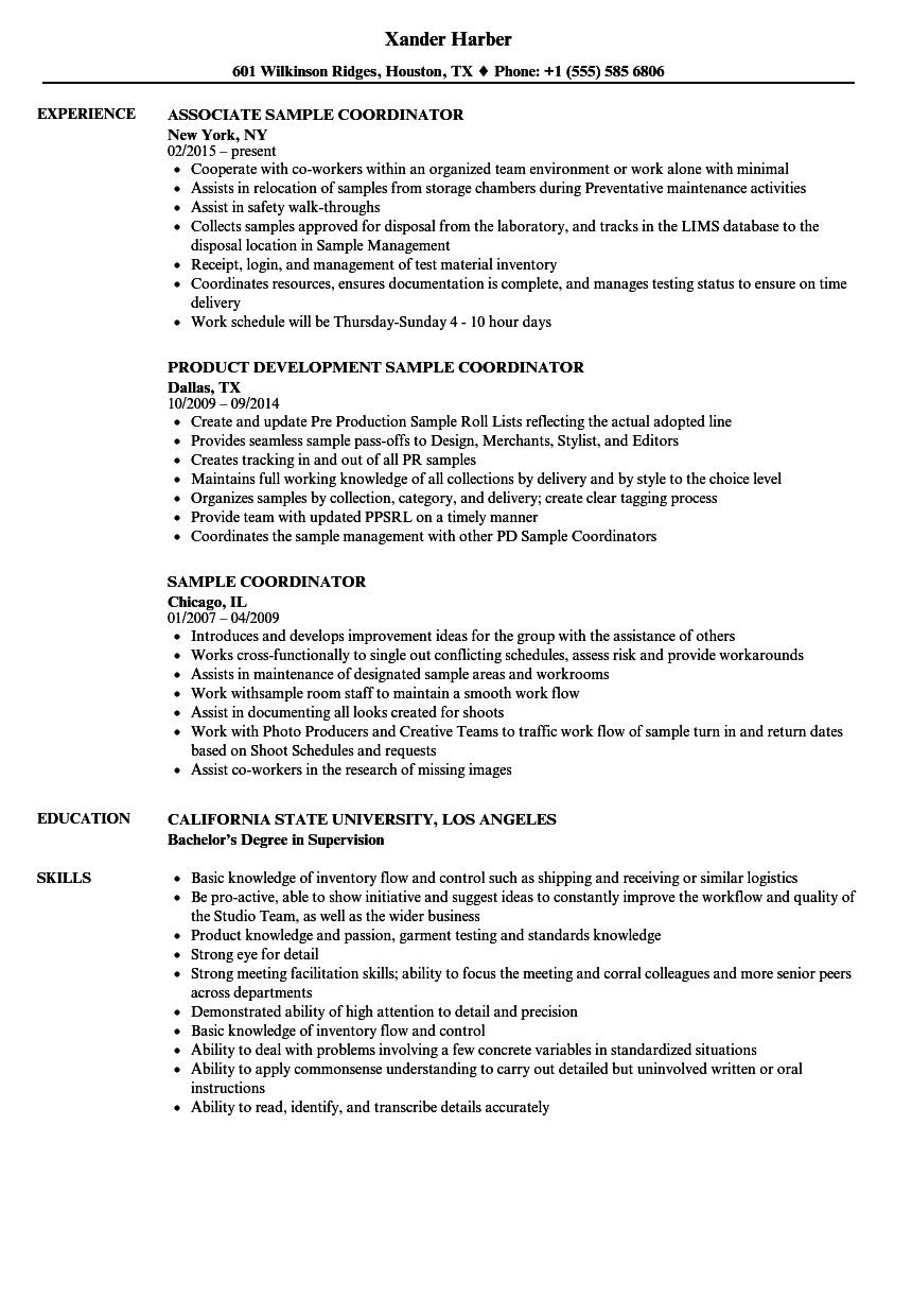 Download Sample Coordinator Resume Sample As Image File