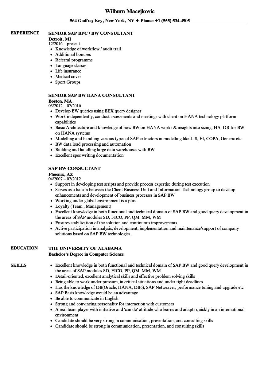 SAP BW Consultant Resume Samples  Velvet Jobs