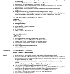 download sap scm resume sample as image file [ 860 x 1240 Pixel ]