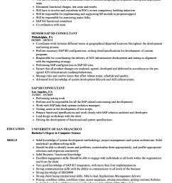 download sap sd consultant resume sample as image file [ 860 x 1240 Pixel ]