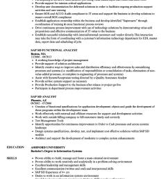 download sap sd resume sample as image file [ 860 x 1240 Pixel ]