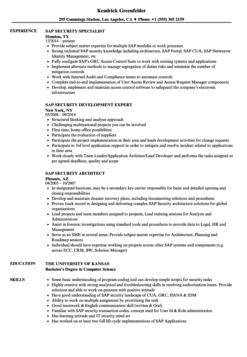 resume sample technical security