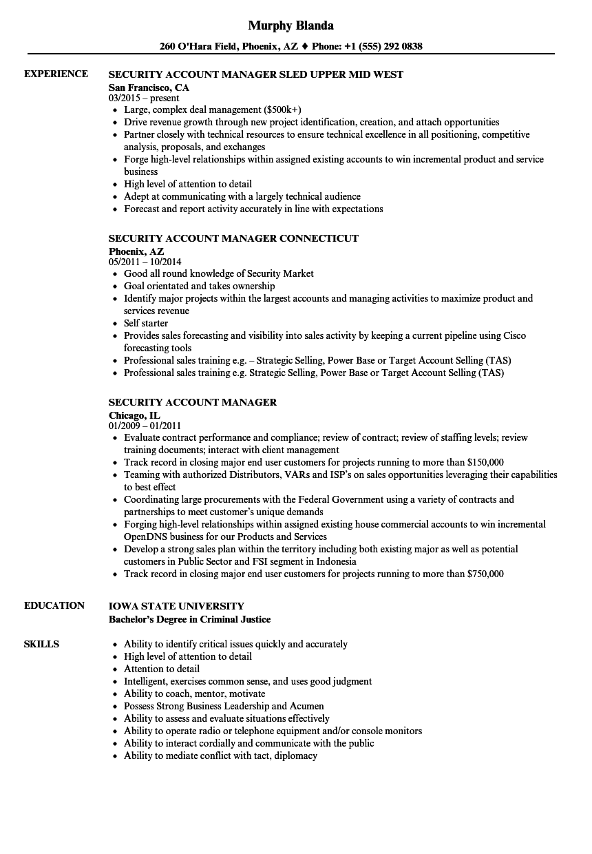 Security Account Manager Resume Samples Velvet Jobs