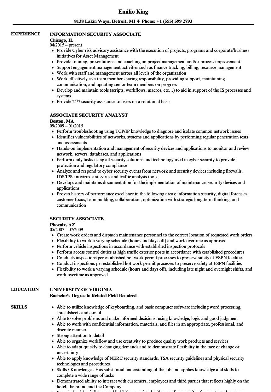 Cissp endorsement resume sample write marketing report