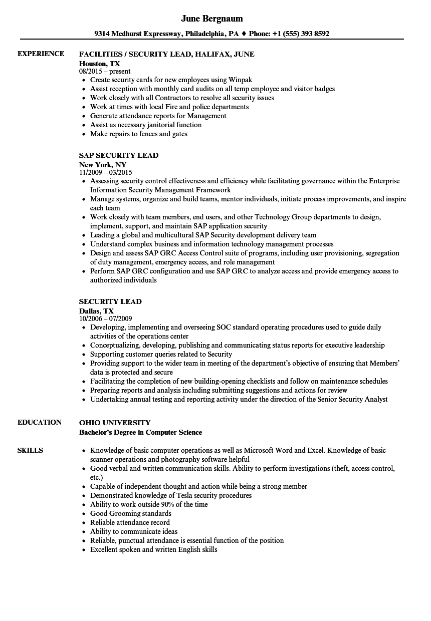Download Security Lead Resume Sample As Image File