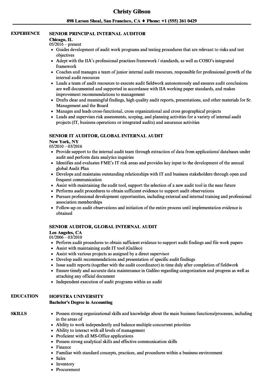 senior internal auditor resume example