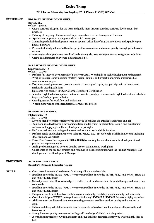 senior application developer resume sample
